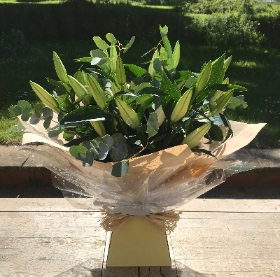 Oriental white lilies and eucalyptus hand tied bouquet presented in a gift box in water.
